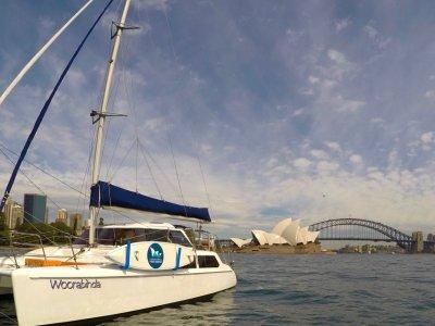 Seawind 1000 With 3 AMSA Surveys