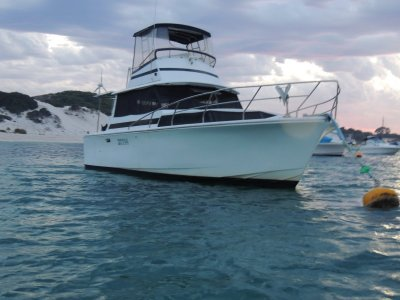 Savage 33 Flybridge cruiser