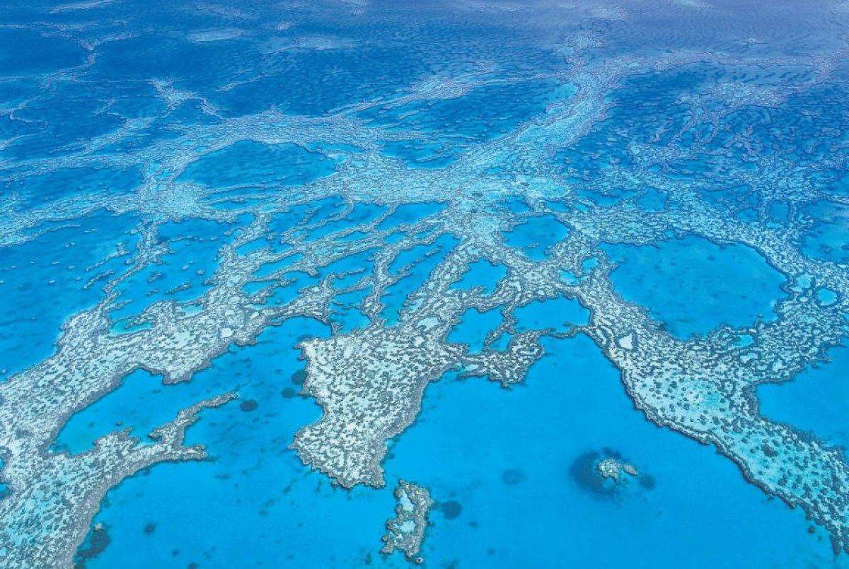 365 Day Great Barrier Reef Marine Permit