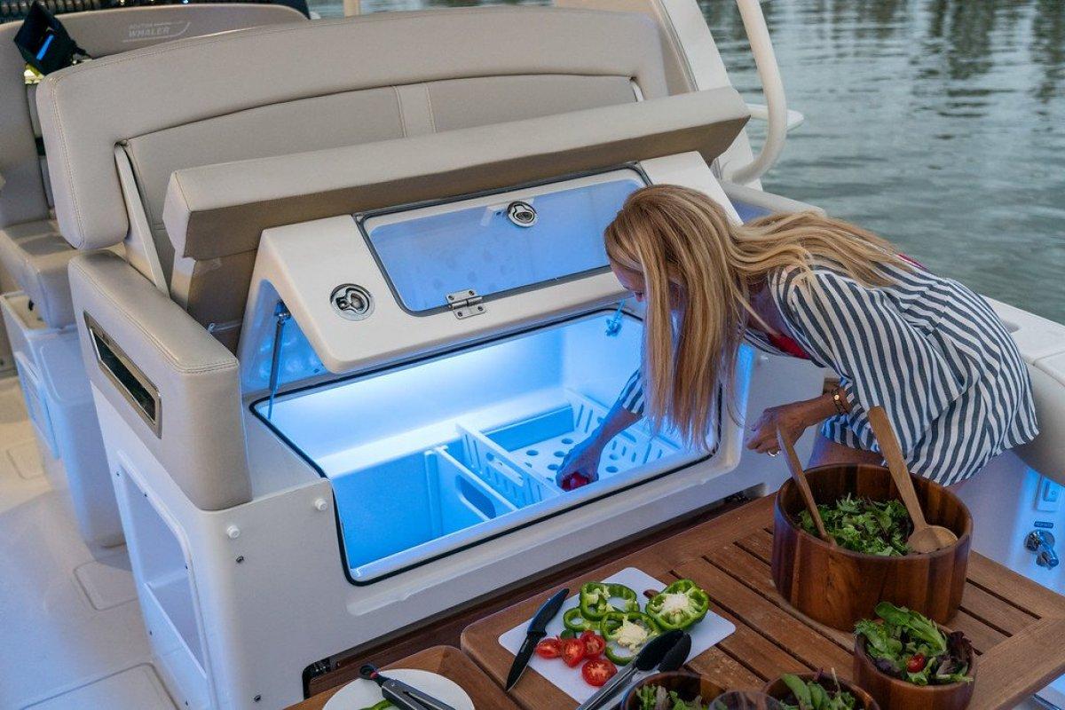 Boston Whaler 380 Realm Centre Console