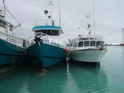 Commercial Vessels | Used Boats For Sale | Yachthub