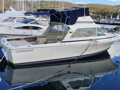 Caribbean 25 Flybridge Sports Cruiser