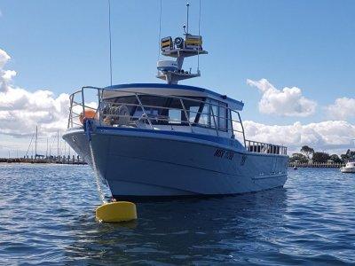 Colin Smith Schwetz Design 11.99 aluminium cray/charter boat