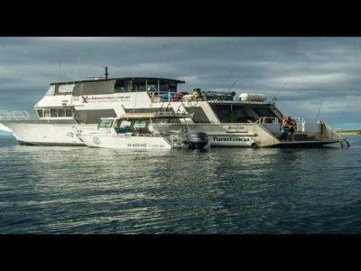 SBF Shipbuilders Passenger Ferry 23m Charter vessel 100 pax