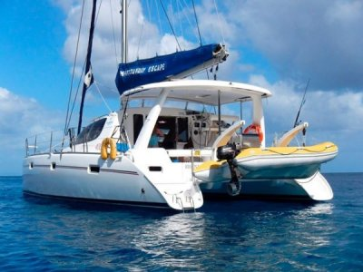 Leopard 40- Click for more info...