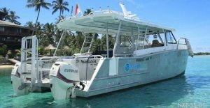 11m Diving / Fast Transfer / Power Cat