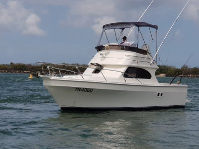Black Watch 260 Flybridge