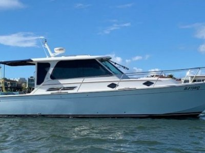 Back Cove 33 Immaculate condition