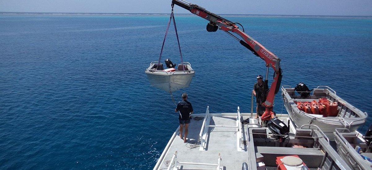 Reef Fishing Charters Queensland