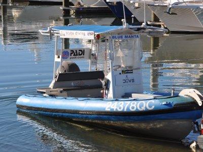 Airib 5.8m RIB in 2C Survey | Near new Outboard + Tubes