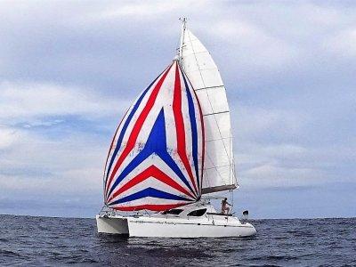 Maxim 380