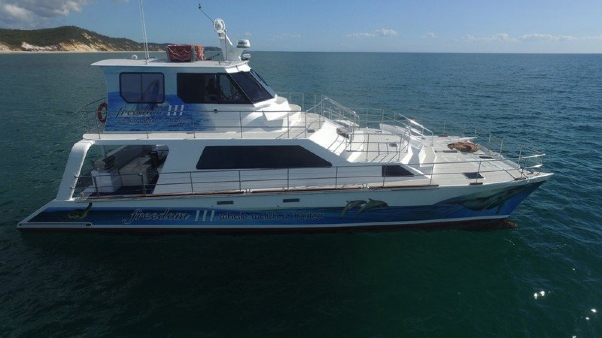 Crowther Catamaran Whale Watch Boat & Business For Sale:Starboard