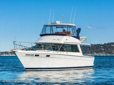 "Riviera 38 Flybridge ""Classic Riviera to start your boating addiction"""