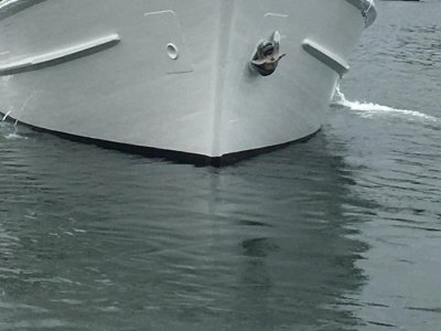 22m Tuna Longliner