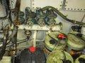 TS359 - East Coast Trawler + Licence