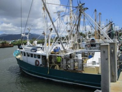 Trawler TS397 Vessel, Licence 184 days negotiable