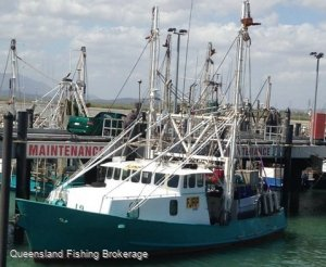 TS391 - REDUCED Trawler, T1 Licence + 200 Days