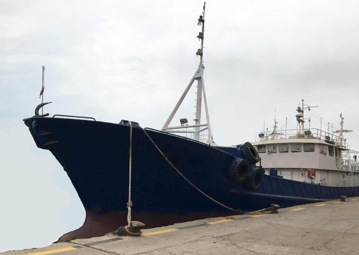 LONG LINERS 36m