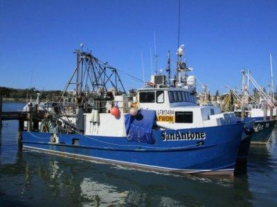 TS416 - $1.5mil Trawl/Purse Seining/Danish Seine