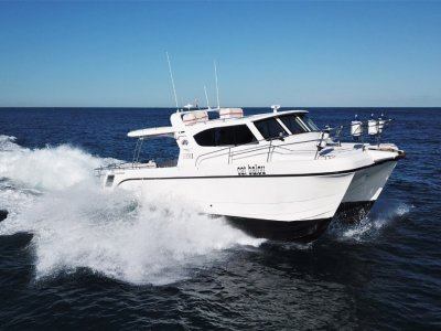 Leisurecat 3500 Commercial Series in AMSA Survey