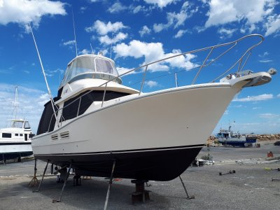 Steber 36 Flybridge Game Fisher