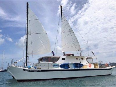 Brand Catamarans