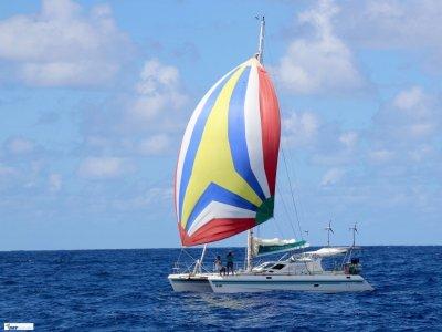 St Francis Catamaran 44