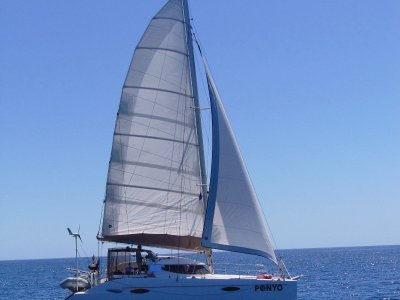 Sail Catamaran Boats 40ft(12 19m) to 50ft(15 24m) For Sale