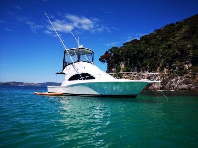 Luhrs 35 Convertible Game Fisher