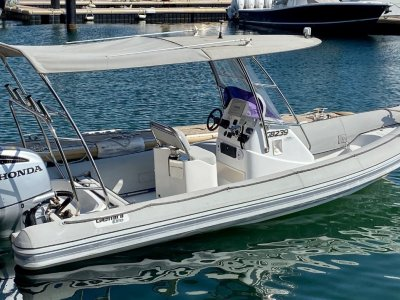 Gemini Elite 650 Powered by Honda 250 4-stroke with electric shift