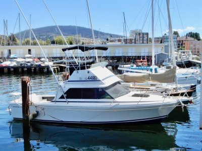 Bertram 25 Flybridge EXCELLENT SEA BOAT PRICED TO SELL!