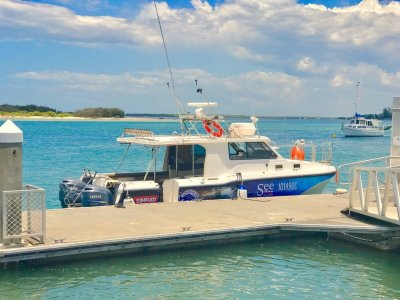 Cougar Cat 8.45m & Adventure Fishing Charter Business