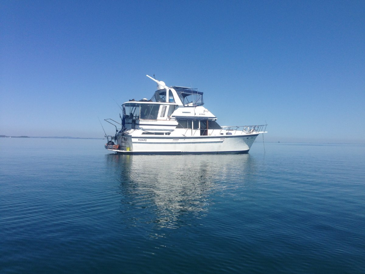 Lyscrest 42 Sundeck Flybridge Cruiser :Want a home on the water with all the comforts?:View of wrap job