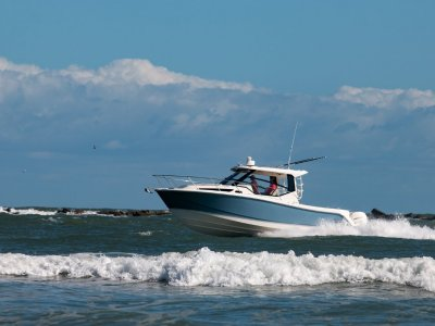 Boston Whaler 325 Conquest