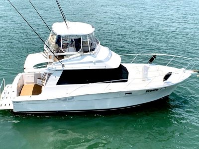 Riviera 35 Flybridge hardtop cruiser- Click for more info...