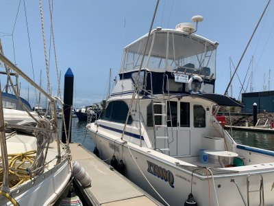 Bertram Caribbean 35 is the envy of other boats
