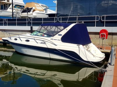 Venom 2800 Sports Cruiser GREAT VALUE AND PRICED TO SELL!