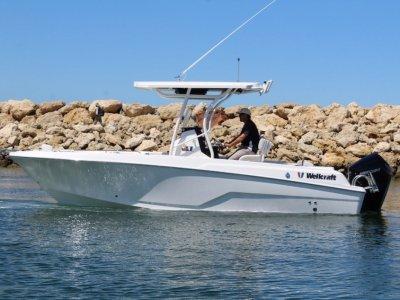 Wellcraft 222 Fisherman With Mercury 225Hp V6