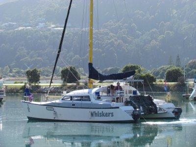 Flica 37 Catamaran
