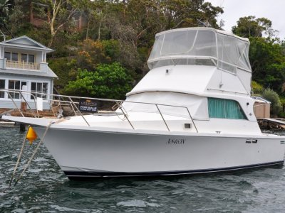 Bertram Caribbean 31 Flybridge
