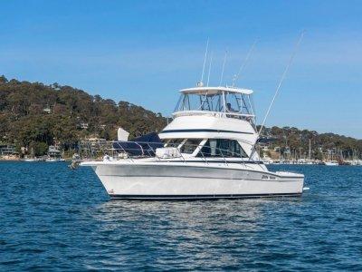 Riviera 36 Single Cabin Working charter boat in survey 2E 2C