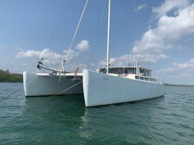 Terry Heron Catamaran