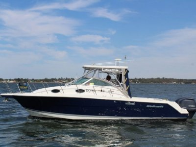Wellcraft 290 Coastal (Just polished, anti-fouled and serviced)