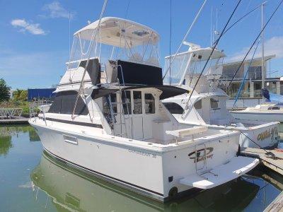 Caribbean 35 Flybridge Cruiser LOW HOURS