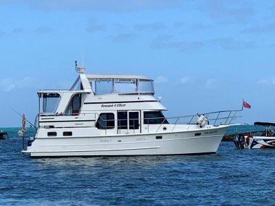 Sea Stella 40 Aft