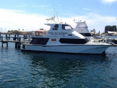 Cougar Cat 15.0 Flybridge 1C Survey Charter Vessel
