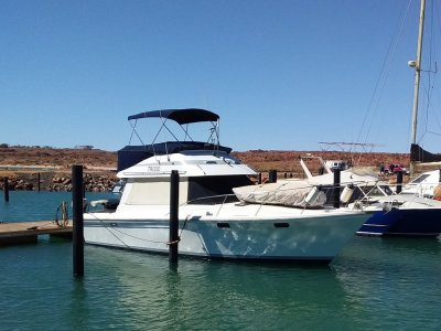 Riviera 34 Flybridge Cruiser - INCLUDES 3m Container Workshop