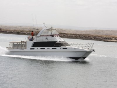 Ultimate Catamaran Custom