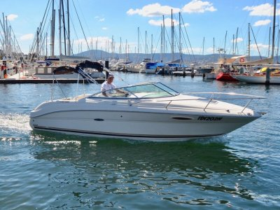 Sea Ray 215 Weekender VERSATILE CRUISER IN EXCELLENT CONDITION
