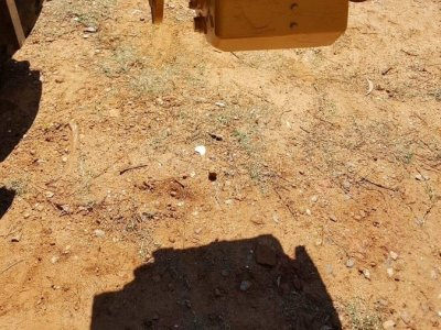 Twin Disc MG 5111 gear box